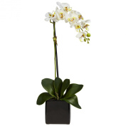 Nearly Natural 4757-S2 Phaleanopsis Orchid with Black Vase Silk Arrangement -Set of 2