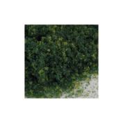 Blended Turf, Green-Grass