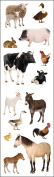 Mrs. Grossman's Stickers-Barnyard Animals