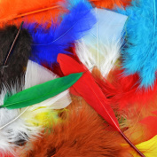 Feather Value Pack, 71 Grammes, Assorted Colours