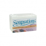Yaley 600000 Soapsations Soap Block 1 Pound