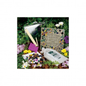 Milestones 90111279 Inspiration Stone Kit