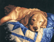 Dimensions 91300 Paint By Number Kit 14 in. x 11 in.-Afternoon Nap