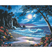Paint By Number Kit 50cm x 41cm -Moonlit Paradise