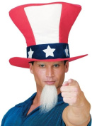 Costumes For All Occasions FW93401 Uncle Sam Hat W Beard