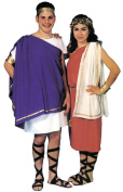 Costumes For All Occasions AA148 Toga Man
