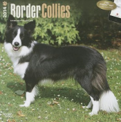 Border Collies 2014 Wall Calendar