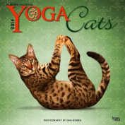 Yoga Cats 2014 Wall Calendar