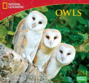 2014 National Geographic Owls Deluxe Wall