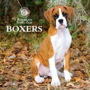 2014 Boxers