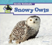 Snowy Owls (Arctic Animals)