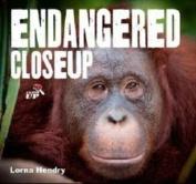 Endangered - Close Up