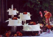 4 Tier Clear Wedding Cupcake Cup Cake Stand Set NEW
