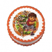 Go Diego Go Edible Cake Image Birthday Party NIP