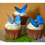 Edible Butterflies © -Large Blue Set of 12 - Cake and Cupcake Toppers, Decoration