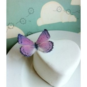 Edible Butterflies © -Large Light Purple and Black Set of 12 - Cake and Cupcake Toppers, Decoration