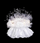 Darice VL1842W Double Hearts Glass Swans with Lights Wedding Cake Topper