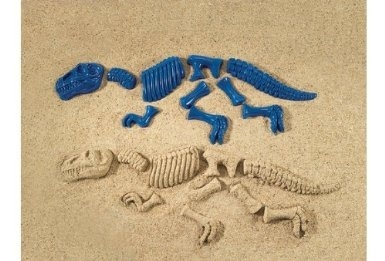 Dinosaur Bones Sand Mould Set (10 Pcs  Set)