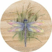 Dragonfly Sandstone Thirstystone Coasters