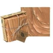 Thirstystone GG6 Sandstone Coaster Set- Cinnabar