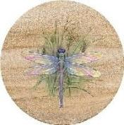 Thirstystone 15.2cm Sandstone Trivet Dragonfly