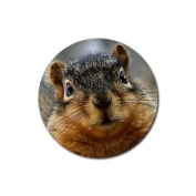 Squirrel Round Rubber Coaster set 4 pack Great Gift Idea