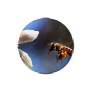 Honey Bee Round Rubber Coaster set 4 pack Great Gift Idea