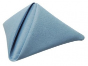 Phoenix 50.8cm by 50.8cm Napkins, Wedgewood Blue, Package of 12