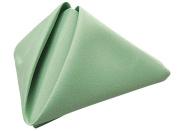 Phoenix 50.8cm by 50.8cm Napkins, Seafoam Green, Package of 12