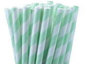 25 Paper Drinking Straws Mint Green Stripes 19.7cm Retro Vintage Style Durable