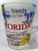 Florida My Friends Visited FL And All I Got Was This Lousy Shot Glass