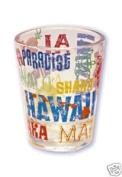 Hawaii Shot Glass Local Talk
