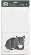 Ive Been Waiting Black & White Cat Kitchen Dish Towel