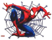 Spiderman Web Placemate - Childrens Placemats