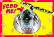 Cairn Terrier 43.2cm x 11-1.3cm 2-Sided Placemat / Dishmat