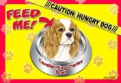 Cavalier King Charles Spaniel 43.2cm x 11-1.3cm 2-Sided Placemat / Dishmat
