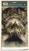 Fiddler's Elbow Perculiar Perspective Cat Kitchen Cotton Dish Towel