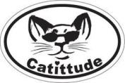 Cattitude Oval Magnet