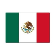 Mexican Flag Mexico Fridge Magnet