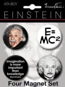 Albert Einstein Round Magnet Set 40084RM4
