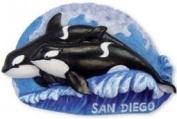 San Diego Magnet Killer Whale PVC