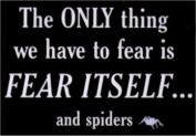 The Only Thing To Fear Is Itself and Spiders Magnet SM4035