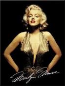 Marilyn Monroe (gold dress) steel fridge magnet