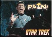 Star Trek Spock Pain Magnet 29450ST