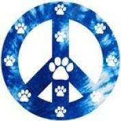 Peace Sign Blue Magnet
