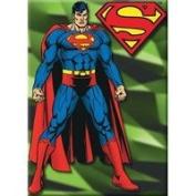 DC Comics Superman Standing Magnet 22048DC