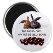 BROWN ONES AREN'T JELLY BEANS Easter Bunny 5.7cm Locker Fridge Magnet