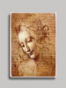 Da Vinci Female Head Study Refrigerator Magnet