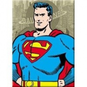 DC Comics Superman Hands On Hips Magnet 24060DC