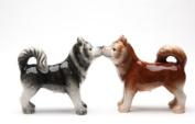 Magnetic Salt and Pepper Shaker - Huskies